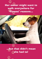 Her owner might want to walk everywhere for 'fitness' reasons... ..but that didn't mean she had to!