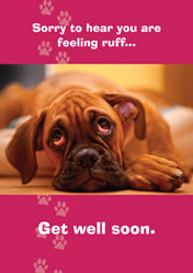 Sorry to hear you are feeling ruff... Get well soon.