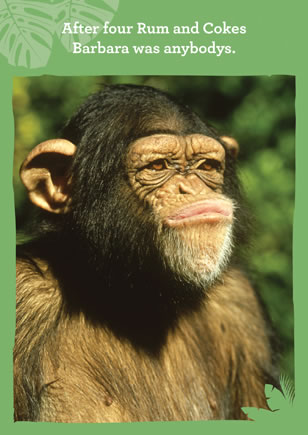 Monkey business buy personalised greetings cards at jobsworth cards after four rum and cokes barbara was anybodys m4hsunfo
